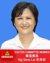 Ng Siew Lai
